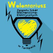 ikony_postow_na_strone_ZSME_wolontariat
